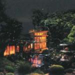 二葉 夏の風物詩「ほたる観賞の夕べ」